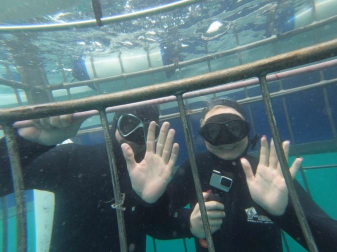 Under Water divers in cage 30 Dec 19